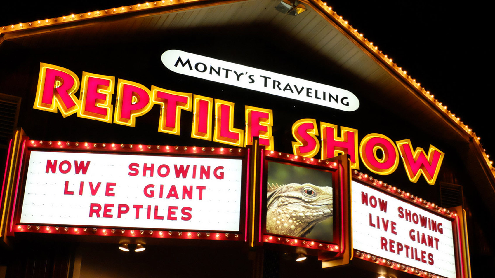 Monty's Traveling Reptile Show